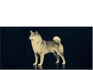 """Medvilninis rankšluostis """"Akita"""" (67x150 cm)"""
