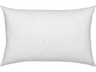 NUKAINUOTA pirmoji pūkinė pagalvėlė kūdikiui (ančių 90% pūkų-10% plunksnų). NUKAINAVIMO PRIEŽASTIS - prekė iš ekspozicijos, paprastas įpakavimas.