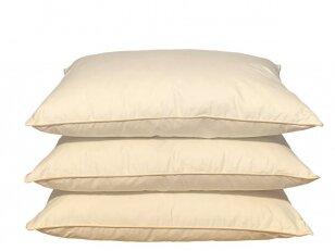 Žąsų 20 proc. pūkų ir 80 proc. plunksnų pagalvė